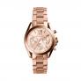 Relógio MICHAEL KORS Mini Bradshaw
