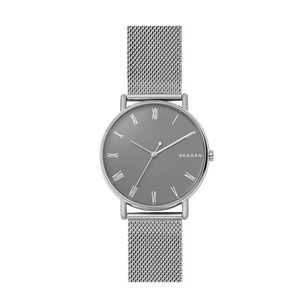 Relógio SKAGEN Signatur Prateado SKW6428