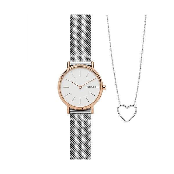 Relógio SKAGEN Signatur Prateado SKW1106
